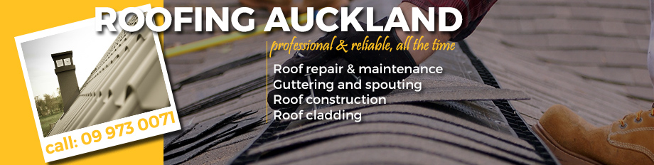 roofing Waitakere
